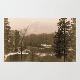 Washington Christmas Landscape Rug