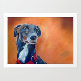 Black greyhound with white bib (a342) Art Print