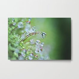 When you hear the fairies sing, you'll know you found my secret hiding place... Metal Print