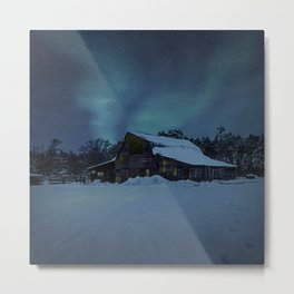 Winter finds out what summer lays up. Metal Print