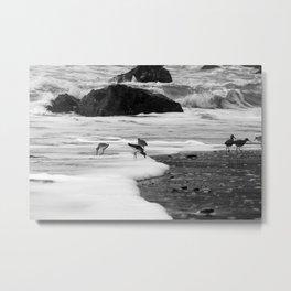 Birds in the Waves Metal Print
