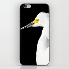 Wild Portrait iPhone & iPod Skin