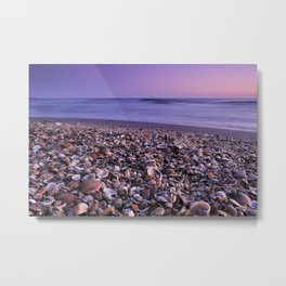 The Beach Of The Shells Metal Print