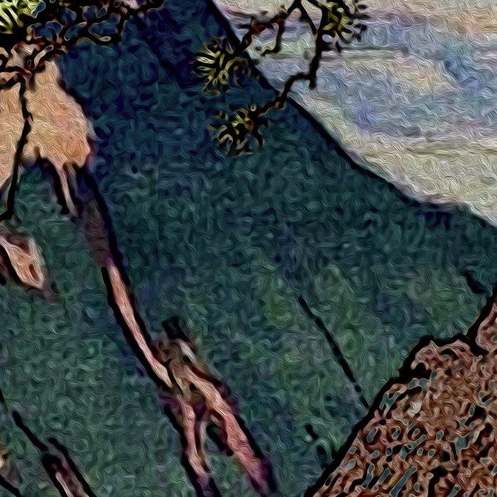 The Downwards Climbing Leggings