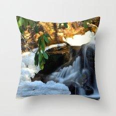 Winter's Rush Throw Pillow