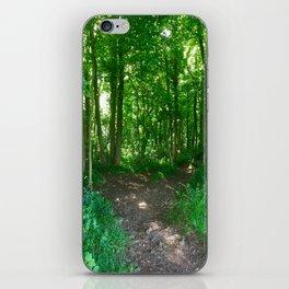 Two Roads Diverge iPhone Skin