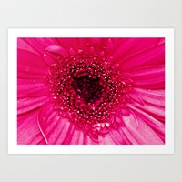 hot pink Art Prints featuring Hot Pink by Tracey Krick Photography