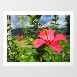 South America - Countryside Art Print