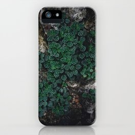 Tropical Tiny Plant Green Leaves Garden Nature Photography iPhone Case