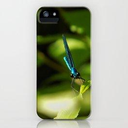 Jewel iPhone Case