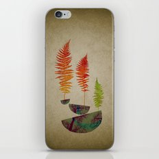 alberame iPhone & iPod Skin