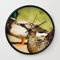 duck Wall Clocks featuring duck by LainPhotography