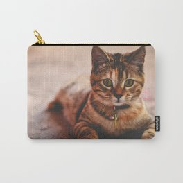 Cute Young Tabby Cat Kitten Kitty Pet Carry-All Pouch