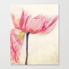 Isis. Poppy flower photograph Canvas Print