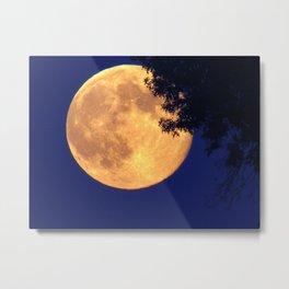 Full Moon Night Metal Print