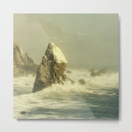 Last Rock Standing (color version) Metal Print
