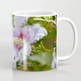 Hibiscus syriacus Coffee Mug