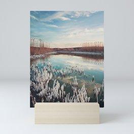 salted swamp Mini Art Print
