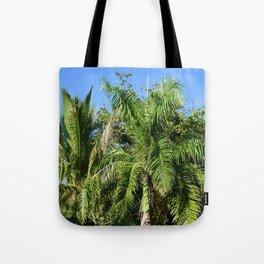 Photo 43 Palm Trees Tote Bag