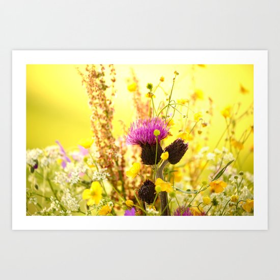 Colorful Wildflowers Art Print