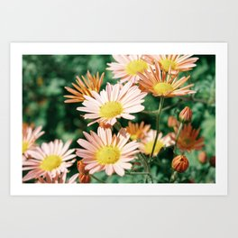 happy lil flowers Art Print
