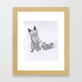 Shadow Fox Framed Art Print