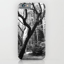 Hoh Rain Forest Impression iPhone Case