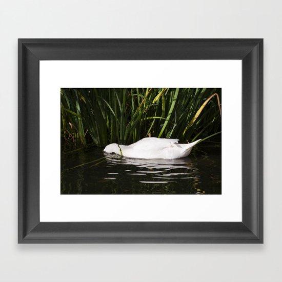 Sleep in the water Framed Art Print