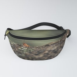 The Cliffhanger Fanny Pack