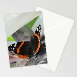 Red Admiral on a White Bird of Paradise Bloom Stationery Cards