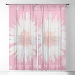 Romantic daisy on delicate pink Sheer Curtain