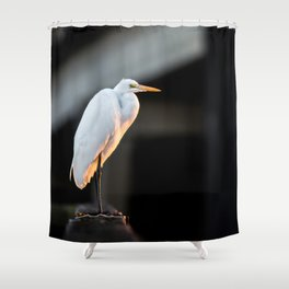 Great Egret at Sunset Shower Curtain