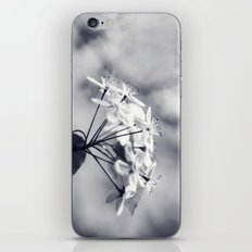 Blossoms in Black and White iPhone & iPod Skin