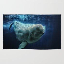 Beluga Whale Rug