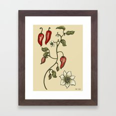 Jalapeno Botanical Framed Art Print