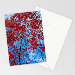 My Red Heaven Stationery Cards