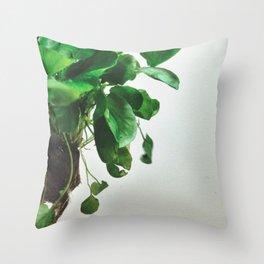 The Avant-Garden Forage || Watercress  Throw Pillow