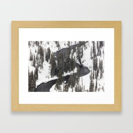 Yellowstone National Park - Lewis River 2 Framed Art Print