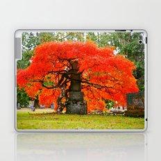 Beauty of Autumn Laptop & iPad Skin