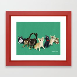 CH Kitties Framed Art Print