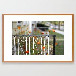 Garden. Framed Art Print