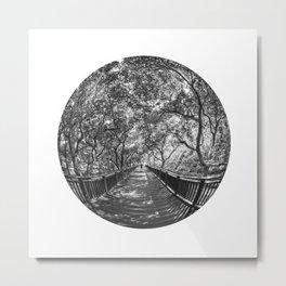Circular Fisheye #6 Metal Print