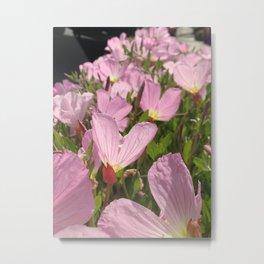 Pretty Pink Row Metal Print