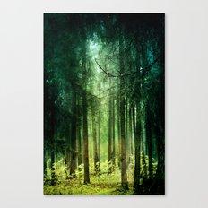 Enchanted light Canvas Print