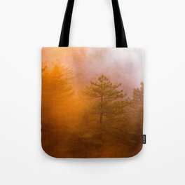 Trees by Zachary Domes Tote Bag