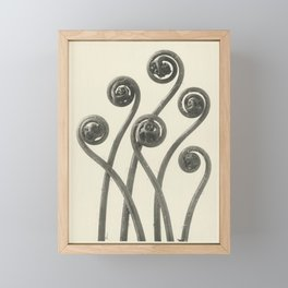 Vintage Fern Fiddleheads Framed Mini Art Print