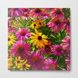 Coneflowers, Floral wall art, colorful flower blooms Metal Print