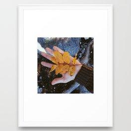Golden Opportunity Framed Art Print