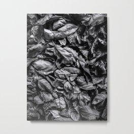 closeup leaf texture in black and white Metal Print