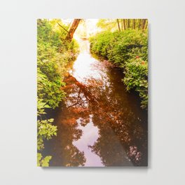 Eagle Creek II Metal Print